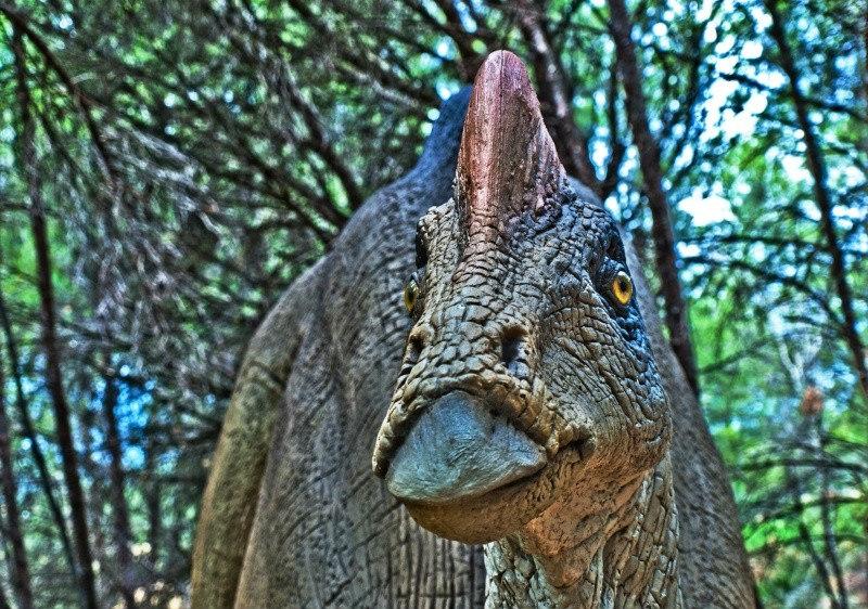 hypacrosaurus dinosaure