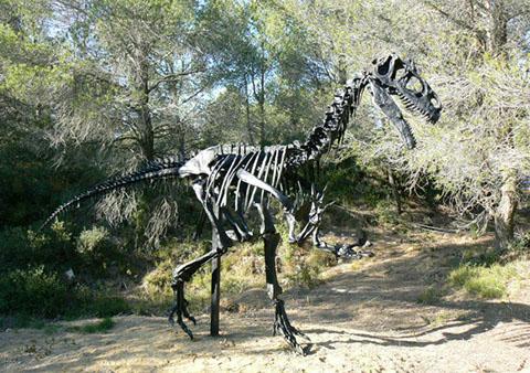 dinosaure allosaure musée