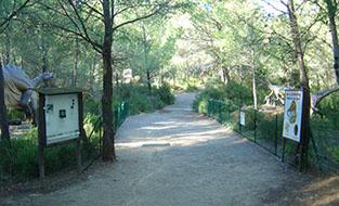 reconstitutions dinosaures parc