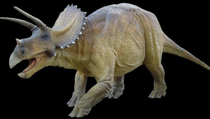 dinosaure_slider1